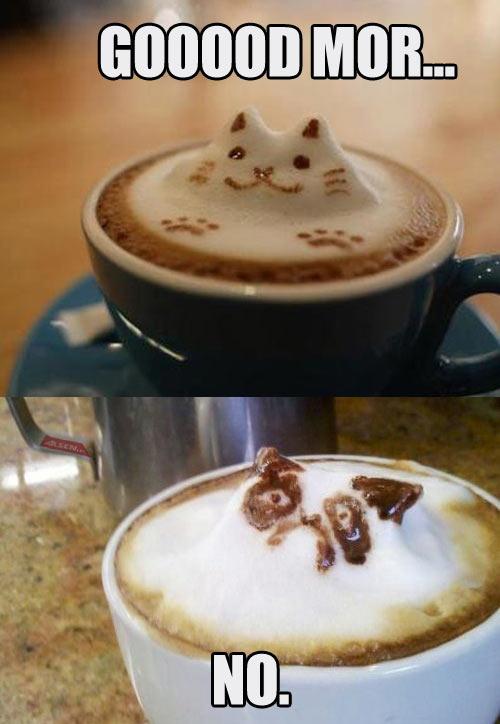 funny-cat-coffee-Grumpy-cat