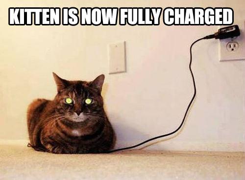 Charging kitty…