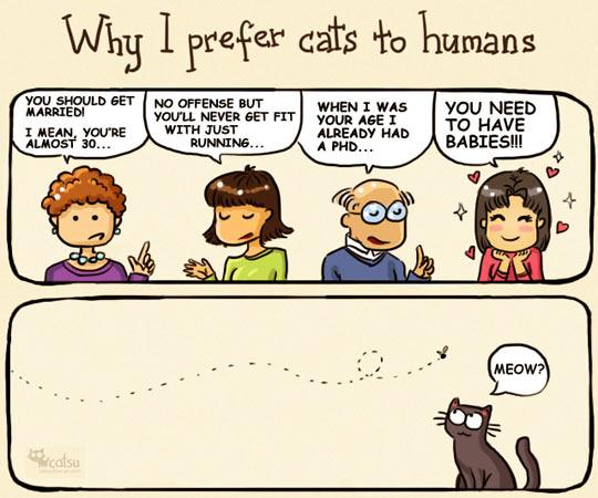 Why I prefer cats…