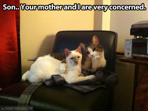 We are very concerned…