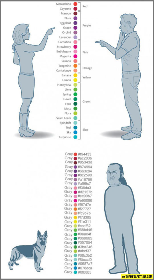 Colors according to different users…