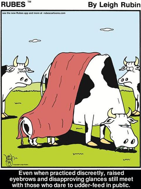 funny-cow-feeding-baby-comic