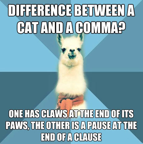 funny-difference-cat-comma-clause