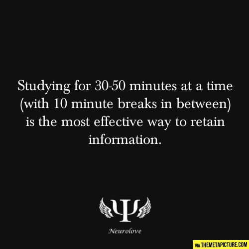 funny-fact-studying-breaks