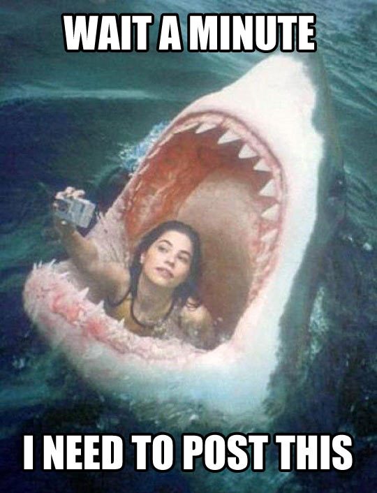 Funny Meme Selfie : Hold on shark