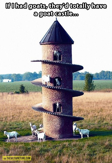 funny-goat-tower-stairs