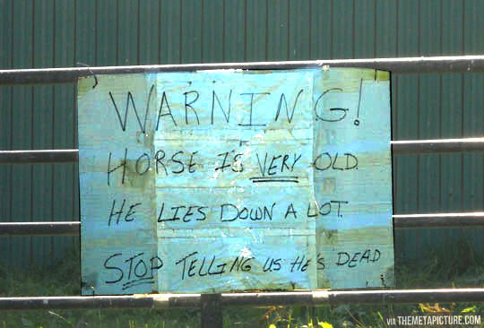 funny-horse-old-dead-sign