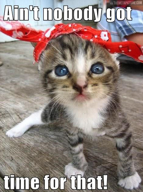 funny-kitten-hat-time-for-that