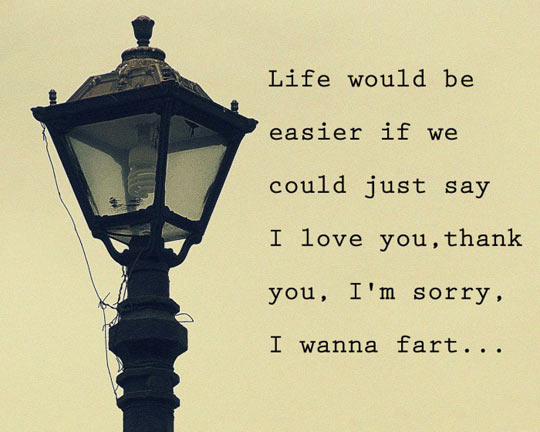 funny-life-easier-sincere-sorry-fart