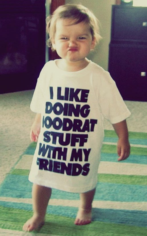 funny-little-girl-shirt-quote