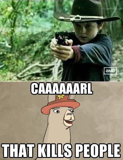The Llama Has Spoken