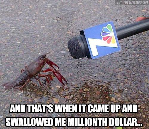 funny-lobster-news-dollar-talking