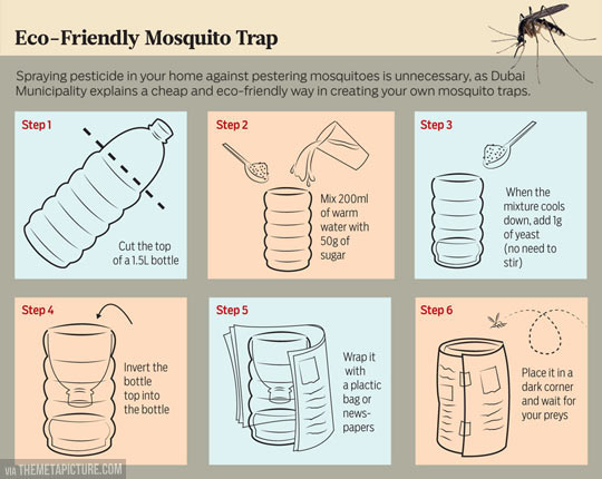 funny-mosquito-trap-bottle-home