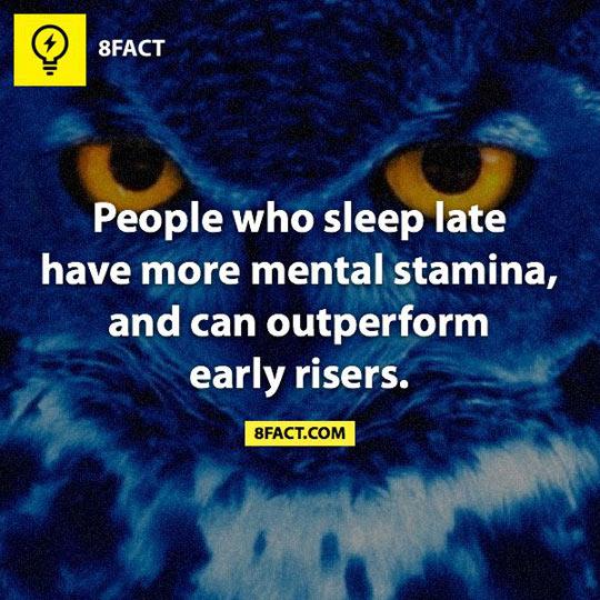 Night Owls…