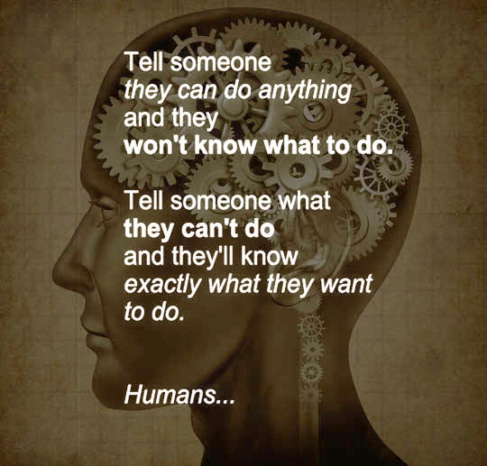 funny-quote-humans-can-do