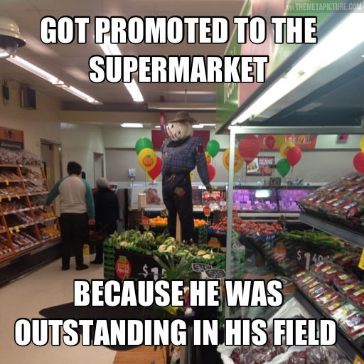 funny-scarecrow-promoted-market-vegetables