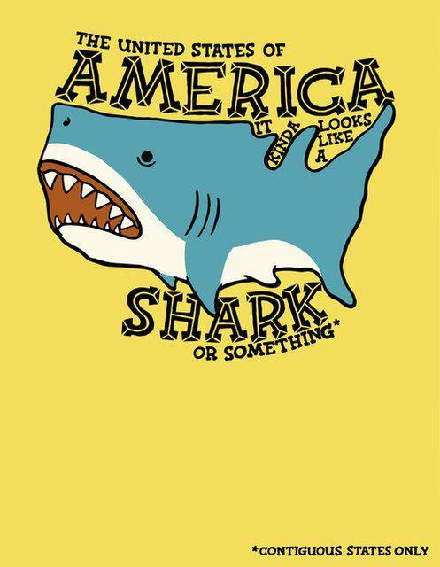 It kinda looks like a shark…