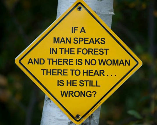 If a man speaks in the forest…