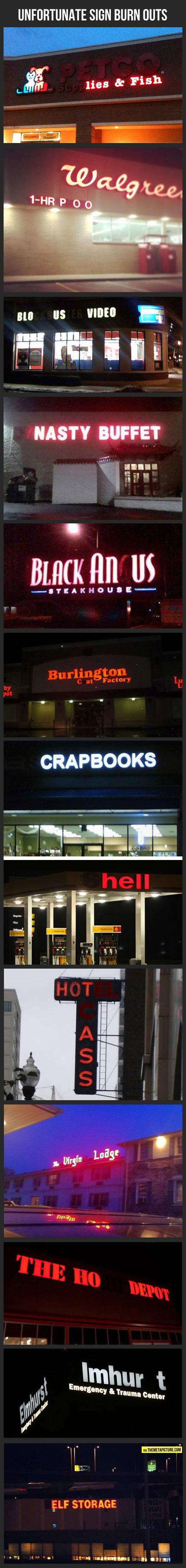 funny-signs-light-pet-shop