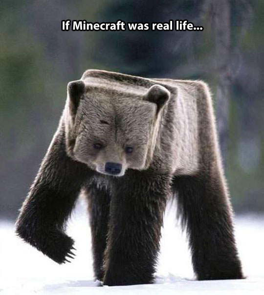 If Minecraft was real…