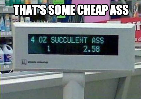 funny-store-cheap-succulent