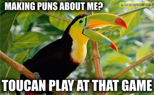 Don't tease the toucans…