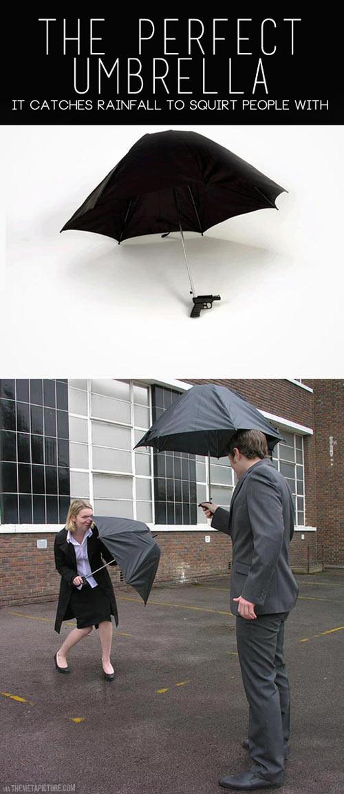 The Perfect Umbrella…