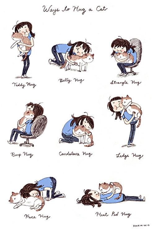funny-ways-hug-cat