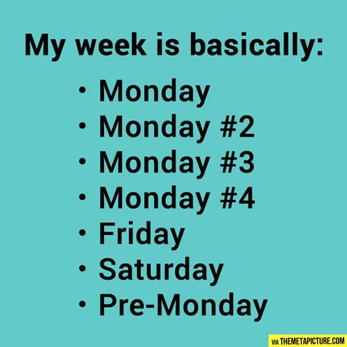 funny-week-basically-Monday