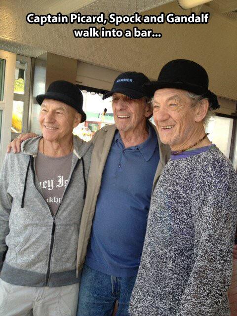 cool-Picard-Spock-Gandalf-actors