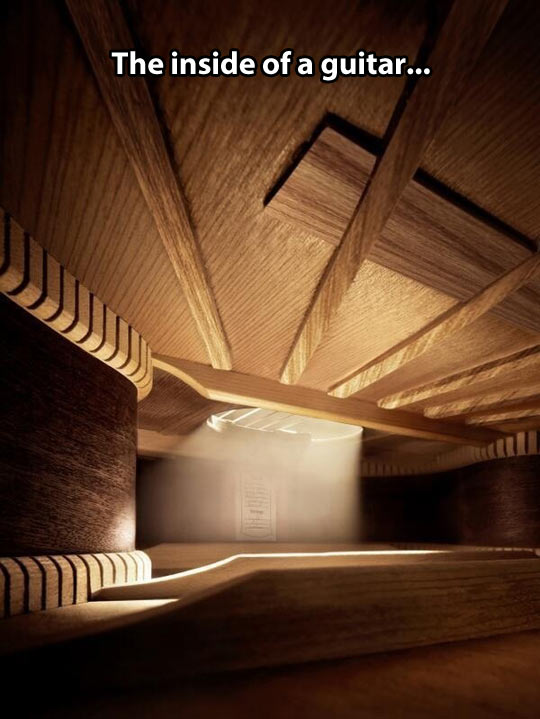 Inside a guitar…