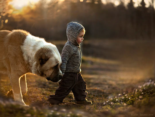 cute-little-boy-dog-protector-friends