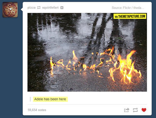 funny-Adele-fire-water
