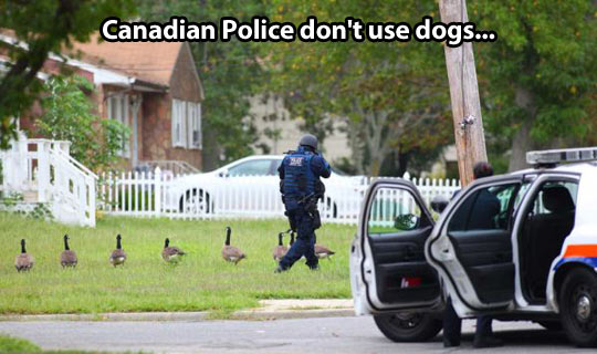 Canadian police uses a different approach…