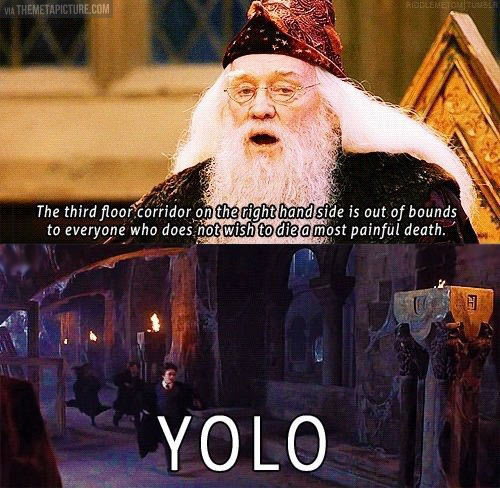 funny-Dumbledore-painful-death-Yolo