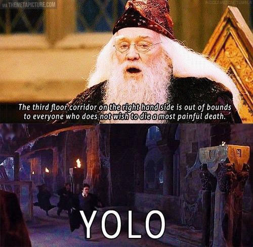 YOLO Potter…