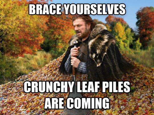 funny-Fall-coming-GOT