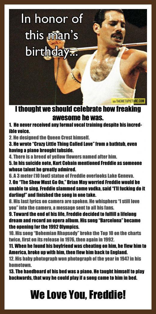 funny-Freddie-Mercury-birthday-awesome