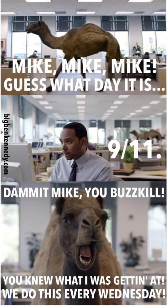 funny-Geico-Camel-hump-day