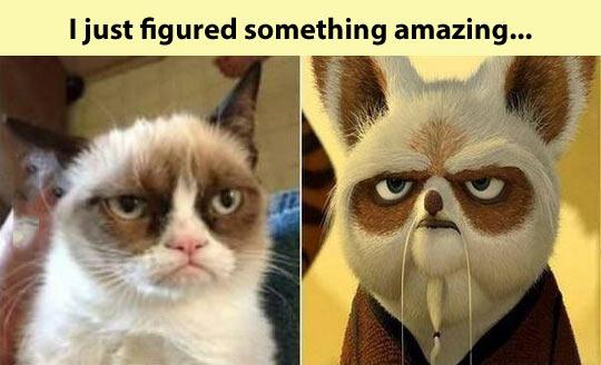 Master Grumpy…