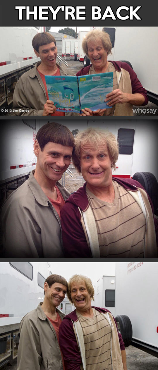 Jim Carrey and Jeff Daniels together again…