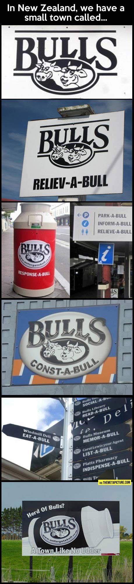 The puns are terr-a-bull…