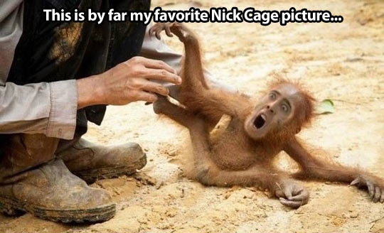 By far the best Nicolas Cage creation…