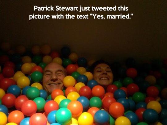 funny-Patrick-Stewart-color-balls
