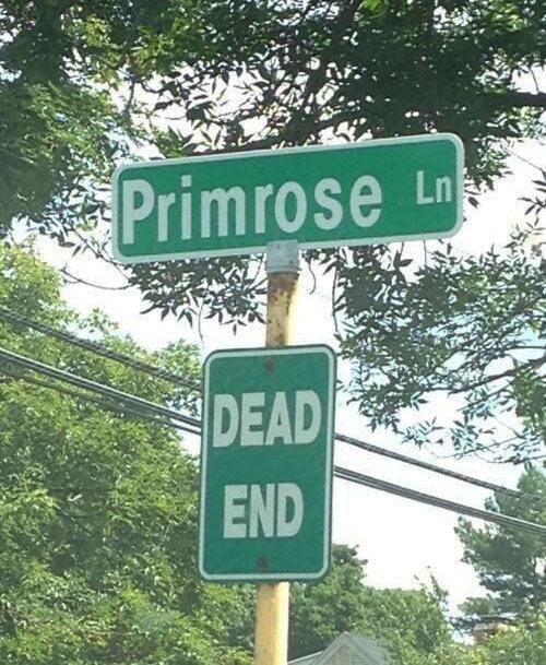 funny-Primrose-street-sign-Hunger-Games