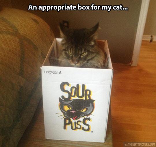 Appropriate box…