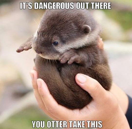 Better be safe…