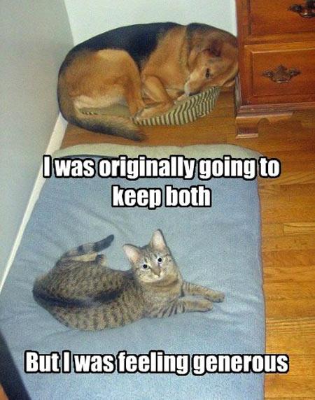 Cat is feeling generous…