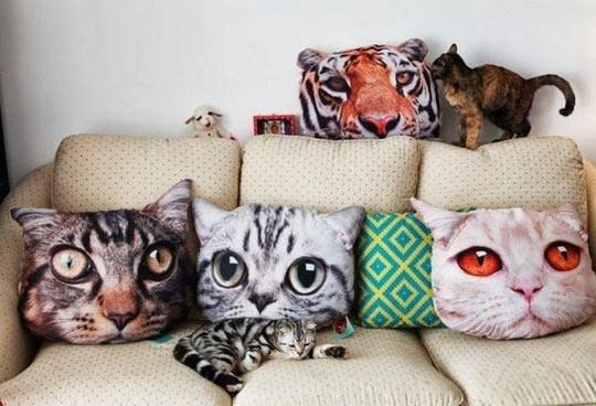funny-cat-pillow-shape