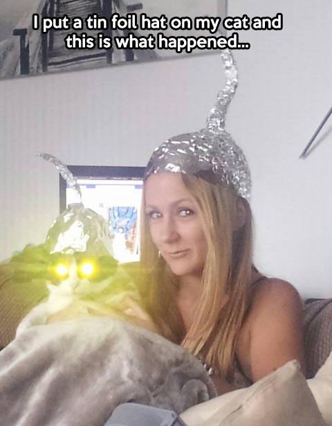 funny-cat-yellow-eyes-rays